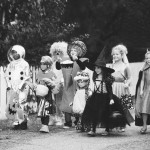 SFL Halloween Edition: Reality Confusion