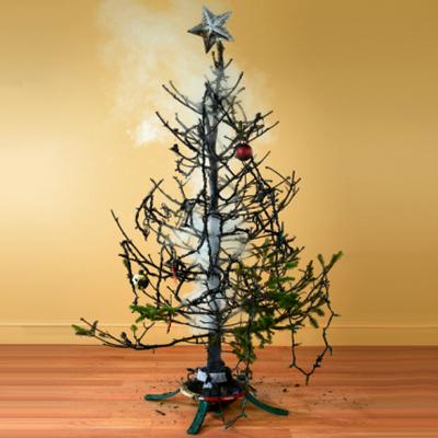 Christmas Trees | Stuff Fundies Like